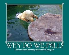 why we fall