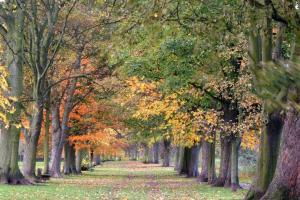 www.freefoto.com